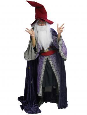 c261-wizard
